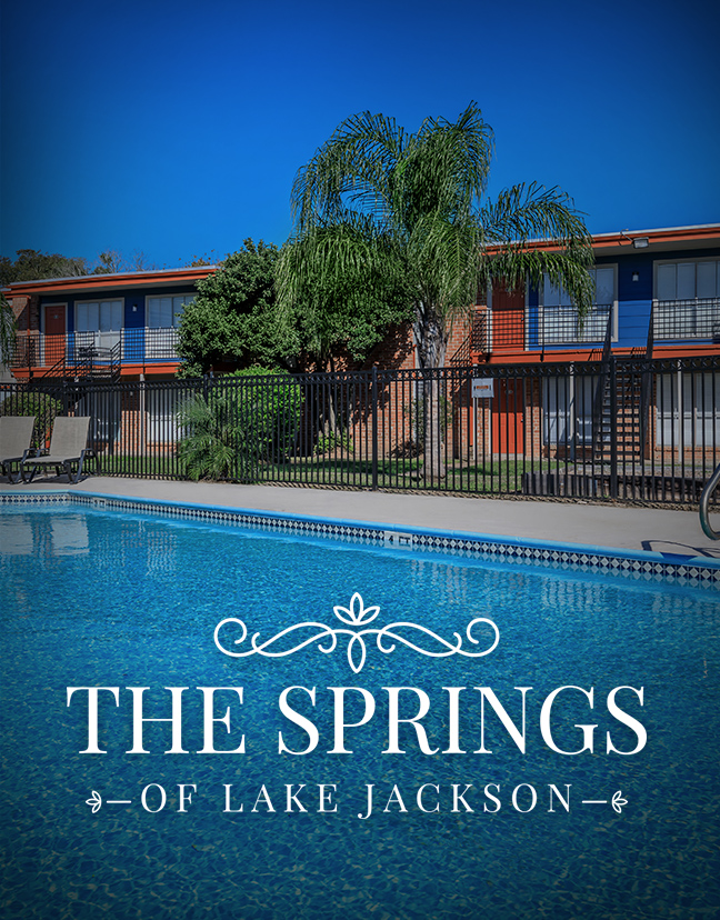 The Springs of Lake Jackson Property Photo